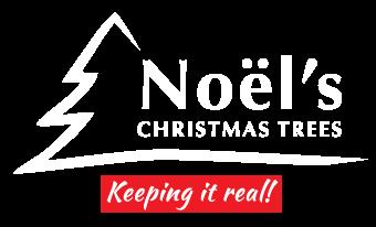 Noel's Christmas Trees